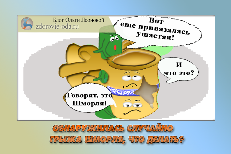 грыжа шморля